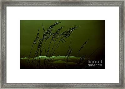 Sea Oat And Clouds Framed Print by Janice Spivey