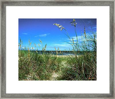 Sea Oat Dunes 11d Framed Print by Gerry Gantt