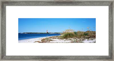 Sea Oat Grass On Beach With Ponce De Framed Print