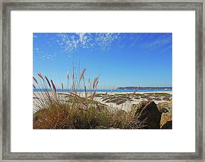 Sea Oats And Dunes Framed Print by Kathy Yates