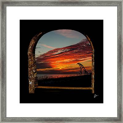 Sea Oats And Sunset Framed Print