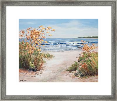 Sea Oats And Sunshine Framed Print