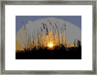 Sea Oats At Sunset Framed Print by David Lee Thompson