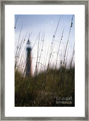 Sea Oats Dunes  Framed Print