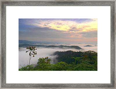 Sea Of Clouds At Panorama Hill Framed Print by Edward Seah