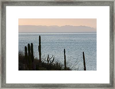 Sea Of Cortez Framed Print by Richard Steinberger