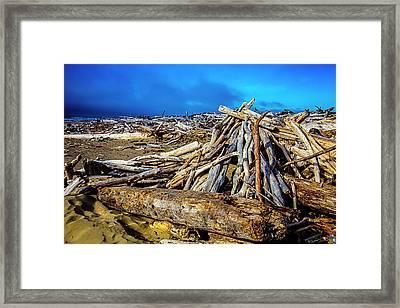 Sea Of Driftwood Framed Print
