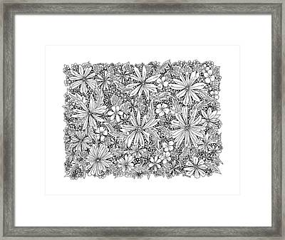 Sea Of Flowers And Seeds At Night Horizontal Framed Print by Tamara Kulish