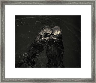 Sea Otters II Toned Framed Print by David Gordon