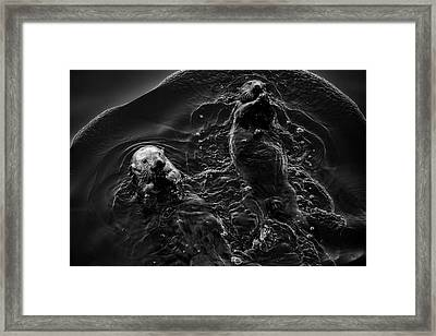 Framed Print featuring the photograph Sea Otters Iv Bw by David Gordon