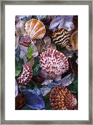 Sea Shells Among Sea Glass Framed Print by Garry Gay