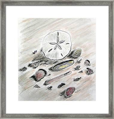 Sea Shells Framed Print by Diane Frick