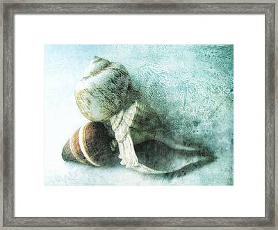 Sea Shells IIi Teal Blue Framed Print by Ann Powell
