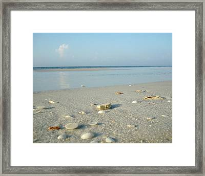 Still Framed Print by Kathy Bucari