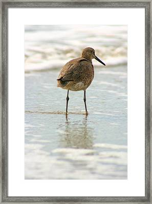 Sea Shore Stroller Framed Print