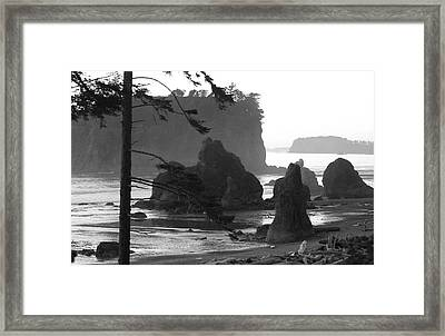 Sea Stacks Framed Print by Sonja Anderson
