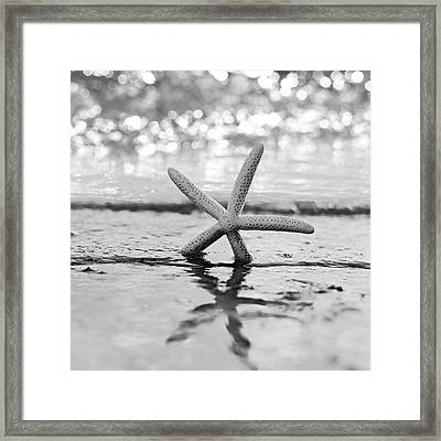 Sea Star Bw Framed Print