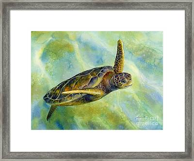 Sea Turtle 2 Framed Print by Hailey E Herrera