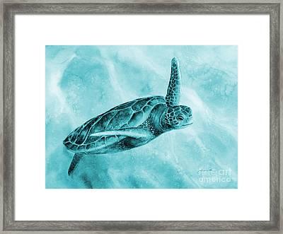 Sea Turtle 2 On Blue Framed Print by Hailey E Herrera