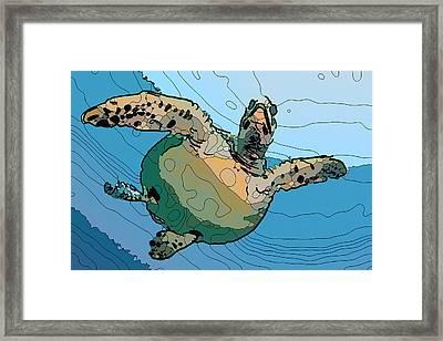 Sea Turtle 4 Framed Print