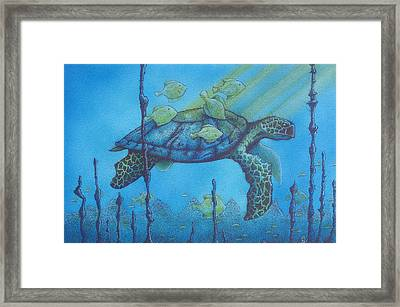 Sea Turtle And Fish Framed Print by Erik Loiselle
