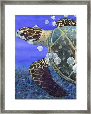 Sea Turtle Framed Print by Catherine G McElroy