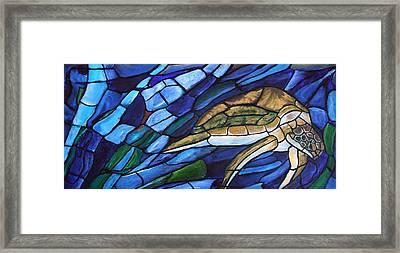 Sea Turtle I Framed Print by David McGhee