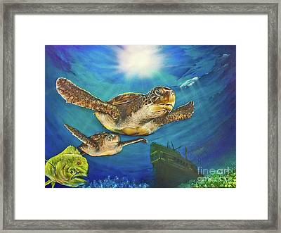Sea Turtle IIi Framed Print