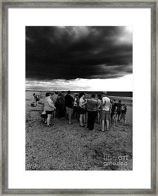 Sea Turtle Release Gathering  Framed Print by WaLdEmAr BoRrErO
