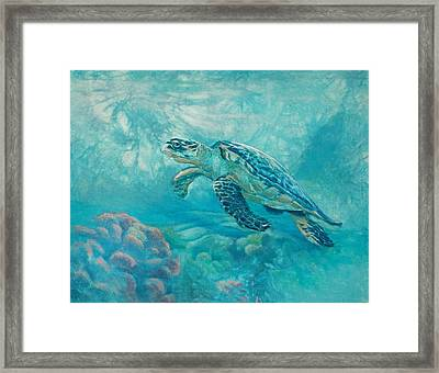 Sea Turtle Framed Print by Vicky Russell
