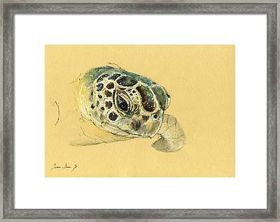 Sea Turtle Watercolor Framed Print by Juan  Bosco