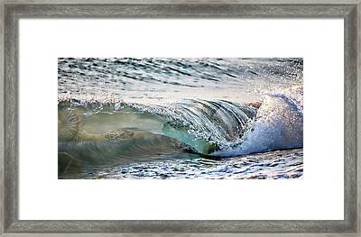 Sea Turtles In The Waves Framed Print by Barbara Chichester