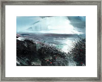 Seaface Framed Print