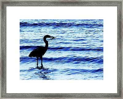Seafood Deli Framed Print