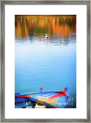 Framed Print featuring the photograph Seagull And Boat by Silvia Ganora