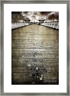 Seagull Bombing Run Framed Print by Meirion Matthias