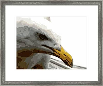 Seagull Closeup Framed Print