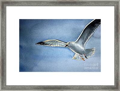 Framed Print featuring the painting Seagull by Eleonora Perlic