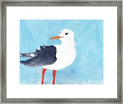 Seagull From Port Townsend II Framed Print