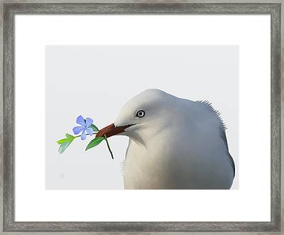 Framed Print featuring the painting Seagull by Ivana Westin