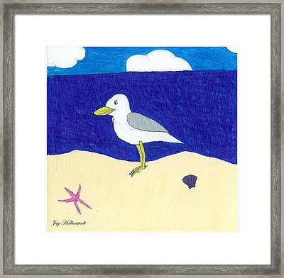 Seagull Framed Print by Jayson Halberstadt