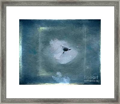 Seagull On Iceflow Framed Print by Victoria Harrington