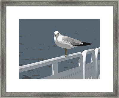 Seagull On The Rail Framed Print