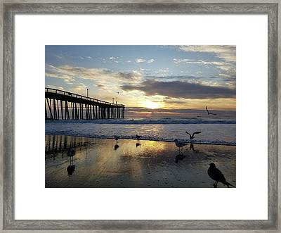Seagulls And Salty Air Framed Print