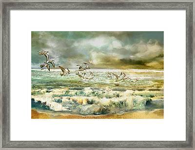 Seagulls At Sea Framed Print by Anne Weirich
