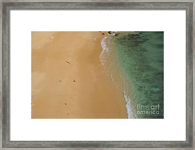 Seagulls In Praia Deserta Framed Print by Angelo DeVal