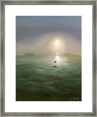 Seagulls In The Mist Framed Print