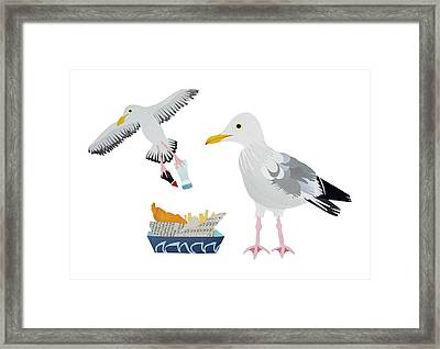 Seagulls Framed Print by Isobel Barber