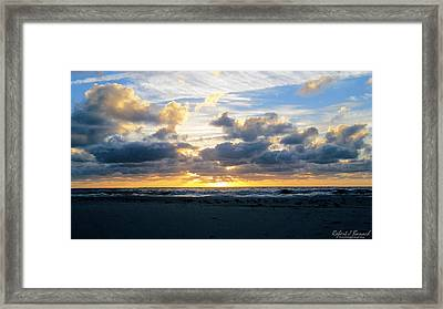 Seagulls On The Beach At Sunrise Framed Print