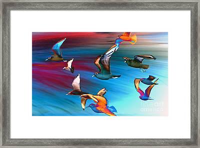 Seagulls Framed Print by Jacky Gerritsen